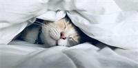 Slapen, hoe gaat dat bij jou?